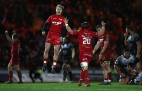 The Scarlets' scrum-half Aled Davies is celebrating at the final whistle after the win against Toulon during the 2017-2018 Champions Cup